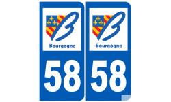 numero immatriculation 58 (region)