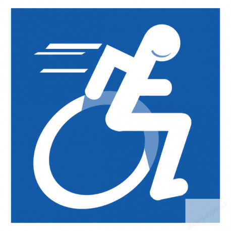 Stickers / autocollant handicape