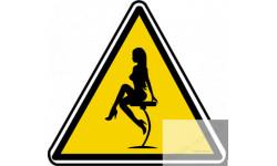 Autocollants/stickers :...