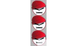 Stickers / autocollants bonnet rouge